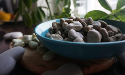 Broad bean and how to prepare it