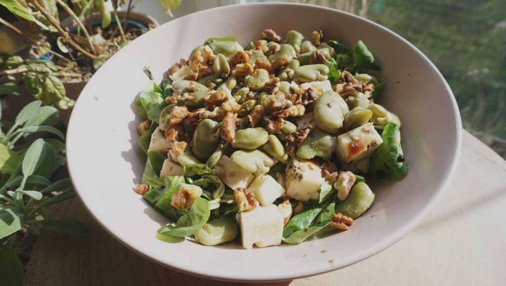 Broad bean salad with blue cheese and walnut
